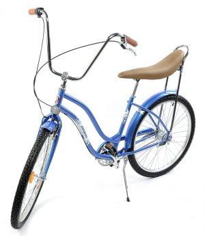 Bicicleta de oras Pegas